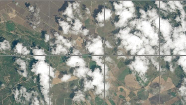 Accumulated precipitation data for agriculture