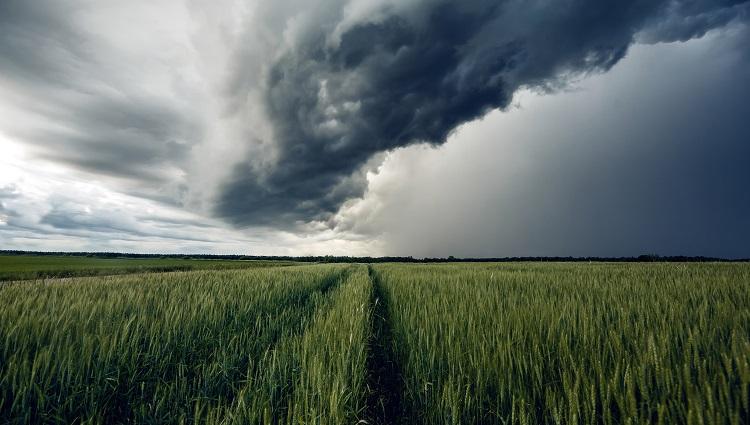 Accumulated temperature data for agriculture