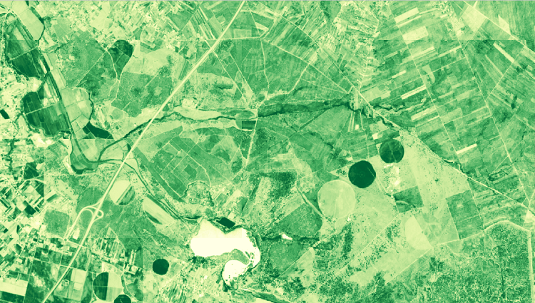 Satellite Images API for Agriculture: NDVI, EVI, True and False colour